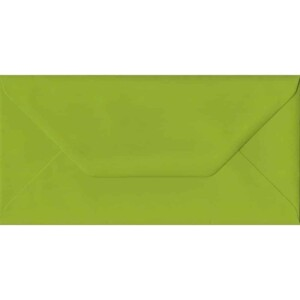 100 DL Green Envelopes. Fresh Green. 110mm x 220mm. 100gsm paper. Gummed Flap.