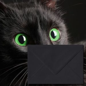 Matt Black Envelopes