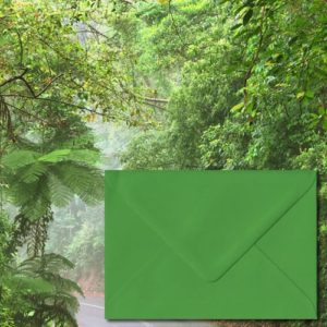 Fern Green Coloured Envelopes