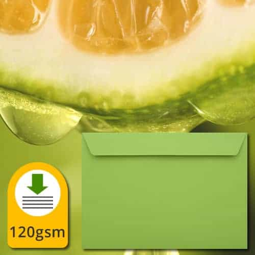 Lime Green Luxury Envelopes