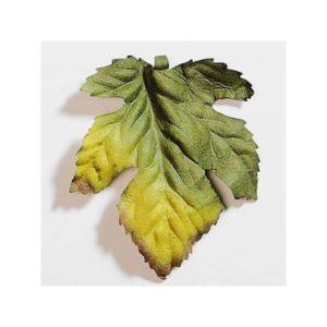 Green Autumn Paper Leaf By Artoz