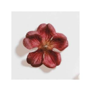 Burgundy Cherry Blossom Paper Flower By Artoz