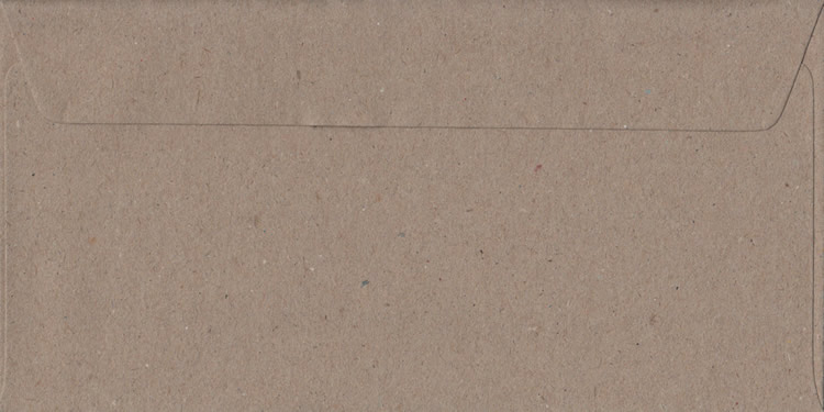 Fleck Craft Recycled Peel And Seal DL 110mm x 220mm Individual Coloured Envelope