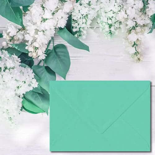 Warbler Green Colour Envelopes